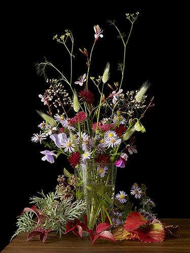Kevin Dutton Botanical Photography
