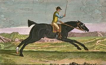 Equestrian Engravings
